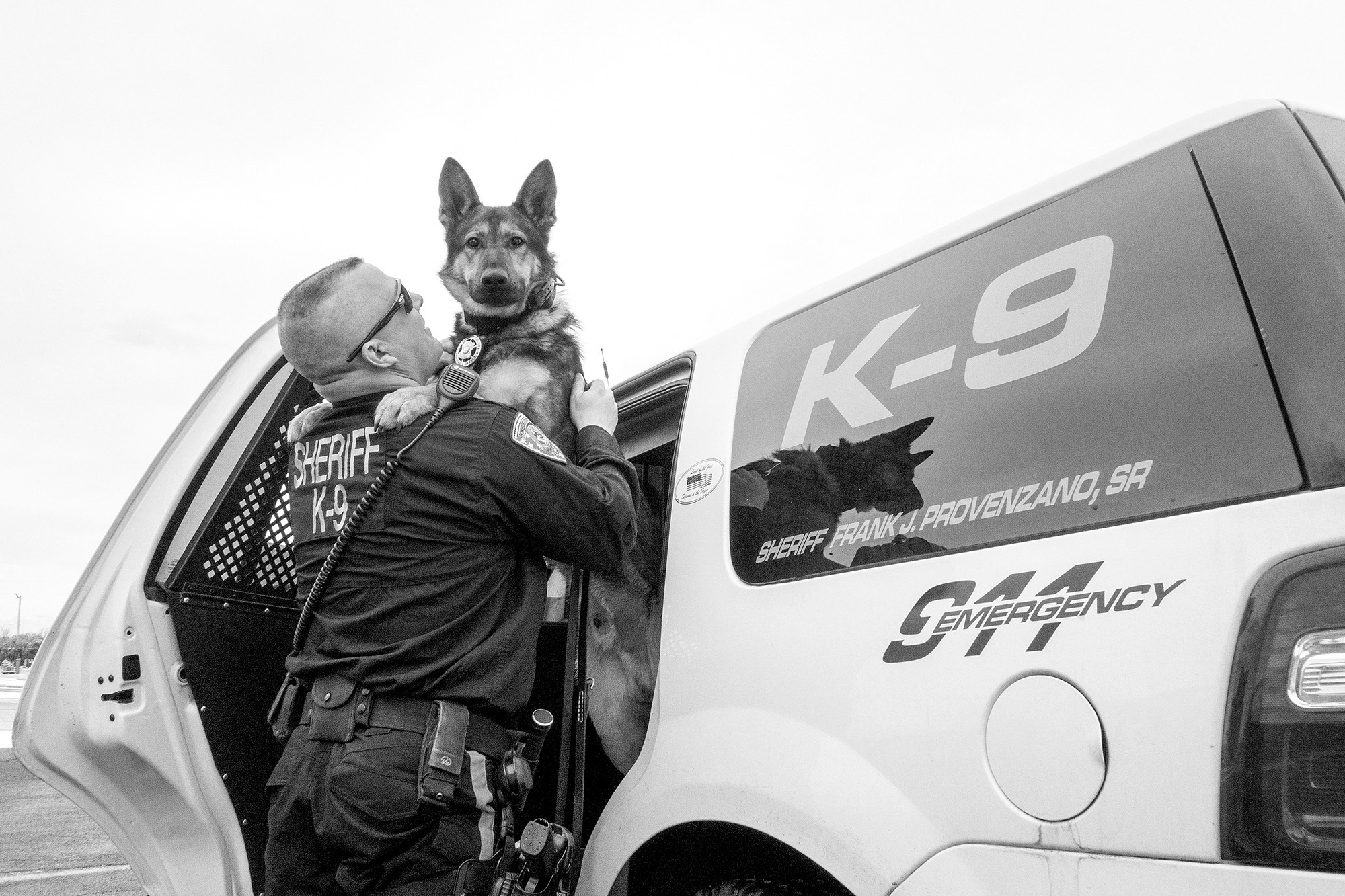 K-9 Photo Series, Canine, Police Dogs